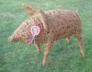 winning pig